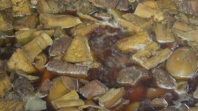 Porc bouilli avec l'oeuf, la pousse de bambou et la caillette de haricots clips vidéos