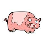 porc comique de bande dessinée Photographie stock libre de droits