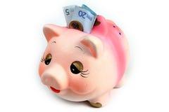 Porc d'argent Photographie stock libre de droits