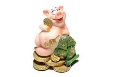 porc d'argent Images stock