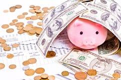 Porc dans la maison des dollars Photos stock