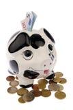 Porc dans les pièces de monnaie avec des billets de banque Image stock
