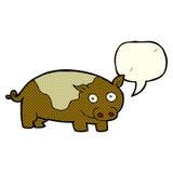 porc de bande dessinée avec la bulle de la parole Photos stock