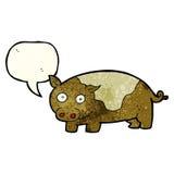 porc de bande dessinée avec la bulle de la parole Photographie stock libre de droits