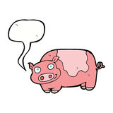 porc de bande dessinée avec la bulle de la parole Image stock
