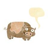 porc de bande dessinée avec la bulle de la parole Photo stock