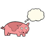 porc de bande dessinée avec la bulle de pensée Photo libre de droits