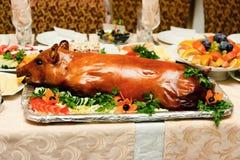Porc de nourrisson de rôti Photographie stock libre de droits