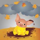 Porc drôle dans la boue D'isolement sur le fond blanc Illustration de vecteur photo libre de droits