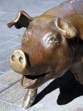 Porc en bronze, mail de Rundle, Adelaïde photos libres de droits