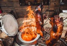Porc et agneau grillés sur le feu et le charbon, gril chaud de tandoor Paraboloïdes chauds de viande photos libres de droits