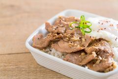 porc fait sauter à feu vif avec l'ail sur le riz complété avec l'oeuf image libre de droits