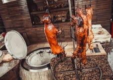 Porc grillé, lapin rôti, agneau traditionnel, gril chaud de tandoor Paraboloïdes chauds de viande photographie stock