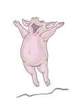 Porc heureux Photo libre de droits