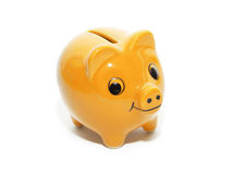 Porc jaune d'argent Images stock
