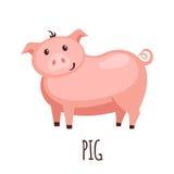 Porc mignon dans le style plat Photo libre de droits