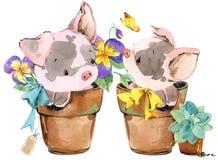 Porc mignon illustration d'animal d'aquarelle de bande dessinée Image libre de droits