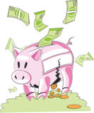 Porc porcin Photographie stock libre de droits