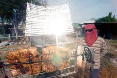 Porc Solaire-grillé tout entier d'un verre Images libres de droits
