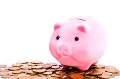 Porc sur l'argent Photo libre de droits