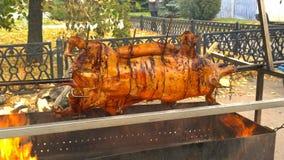 Porc sur une broche Photo stock