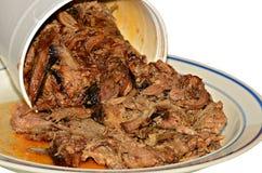 Porc tiré par barbecue Images libres de droits
