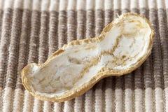 Porca de Pistachio Imagem de Stock