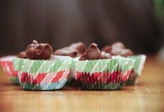 Porcas com cobertura em chocolate do Natal caseiro Fotografia de Stock