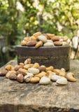 Porcas da mistura em uma tabela de madeira Fotografia de Stock Royalty Free