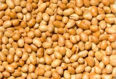 Porcas da soja imagem de stock