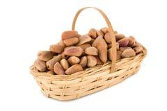 Porcas de pinho em uma cesta Fotografia de Stock
