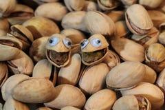 Porcas de pistache com olhos googly fotos de stock
