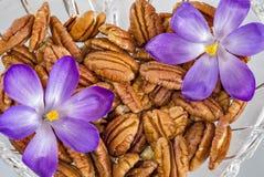 Flores e nozes-pecã do açafrão em uma bacia Foto de Stock