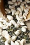 Porcas e sementes de abóbora Imagens de Stock Royalty Free