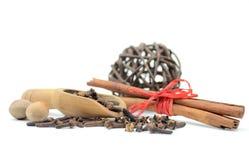 Porcas, varas de canela e alguns cravos-da-índia Imagens de Stock
