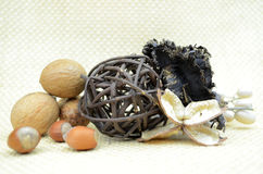 Porcas, varas de canela e fatia alaranjada secada Imagem de Stock
