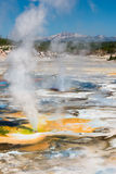 Porcelain Basin in Yellowstone Stock Photos