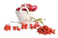 Porcelain basket with berberries Stock Photos