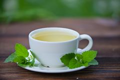 Porcelainl cup with green tea on table Royalty Free Stock Image