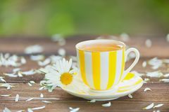 Porcelainl cup with green tea on table Stock Photo