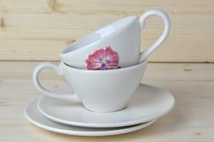 Porcelain cups and saucers Stock Photos