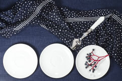 Porcelain dishes and cookies with cranberries Royalty Free Stock Photos