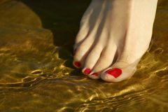 Porcelain foot Royalty Free Stock Photography