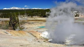 Porcelain Geyser Basin, Yellowstone National Park Stock Image