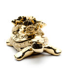 Porcelain golden turtle,  on white background. Royalty Free Stock Photography