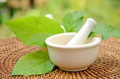 Porcelain herbal medicine grinder. Stock Image