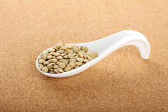 Porcelain spoon with seeds lentils Royalty Free Stock Photo