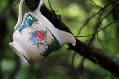 Porcelain in the Woods Stock Photos