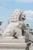 Porcelaine de lion Photos libres de droits