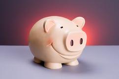 Porcelaine Piggy Imagens de Stock